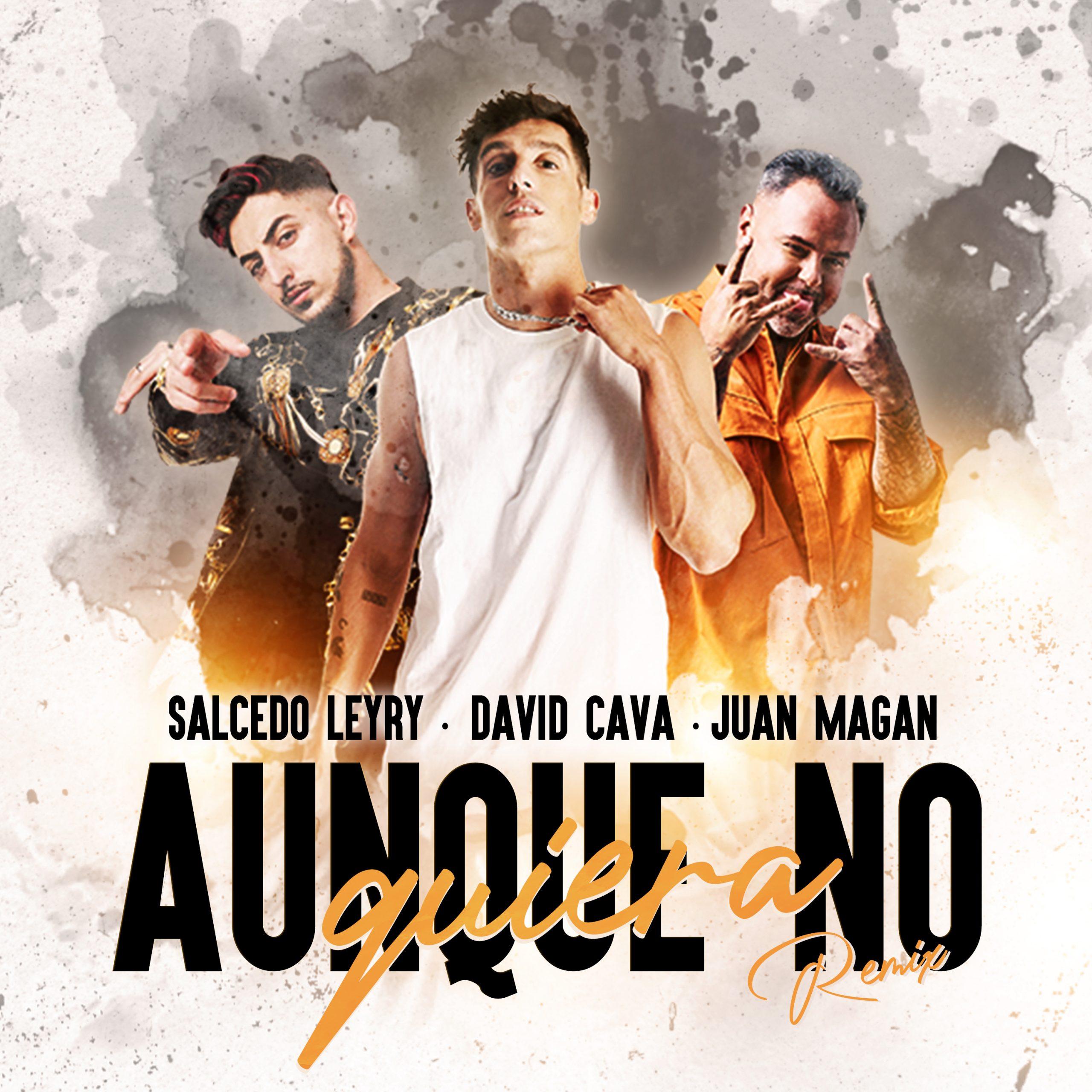 David Cava ft Juan Magan x Salcedo Leyry - Aunque No Quiera REMIX